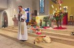 KSEH: Patronatsgottesdienst mit Hamster, Hund und Vogel
