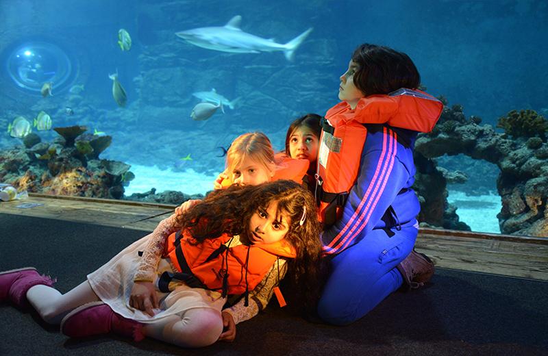 """""""Jona und der Wal"""" im Tropen-Aquarium"""