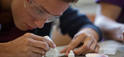 """Auszeichnung für """"Lab in a drop""""-Projekt der Katholischen Schule Harburg"""