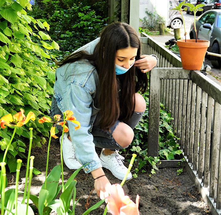 Wenn aus guten Wünschen Sonnenblumen werden