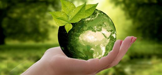 Ökologie und Nachhaltigkeit an den katholischen Schulen